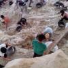 Descubren un nuevo y rico yacimiento paleontológico en Orce
