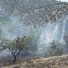 Un detenido por el incendio forestal en el parque natural Sierra de Baza