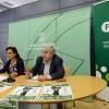 Híjar, Las Gabias y Cullar Vega acogerán el Campeonato de Balonmano de Infantiles 2015