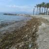 Motril pedirá actuaciones en las playas para paliar los efectos del temporal