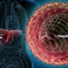 Anticiparse a la hepatitis C