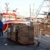 AUDIO: El Puerto de Motril ha invertido 49 millones en mejoras en una década